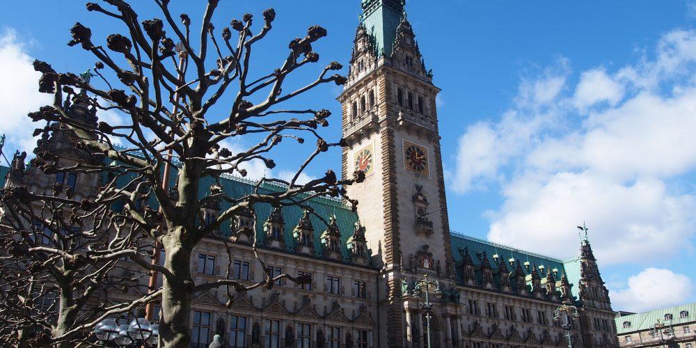 Exploring Hamburg's sights during a Hamburg Tour on foot and by bus