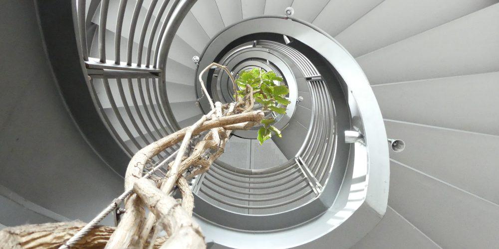 Hamburg empfängt 1 – Zürichhaus Treppenhaus