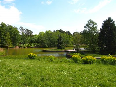 Hamburg Altona Jenischpark Landschaft