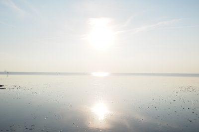 Schleswig-Holstein Friedrichskoog Watt Sonne